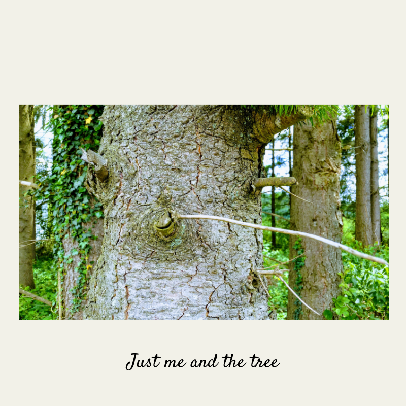 Just me and the tree - I hugged a tree (and I liked it)