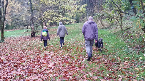 Two kids and a man and a dog walking in the countryside