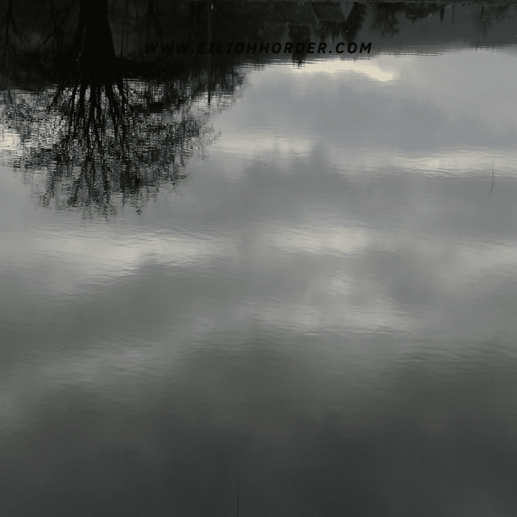 Tree and clouds reflected on water