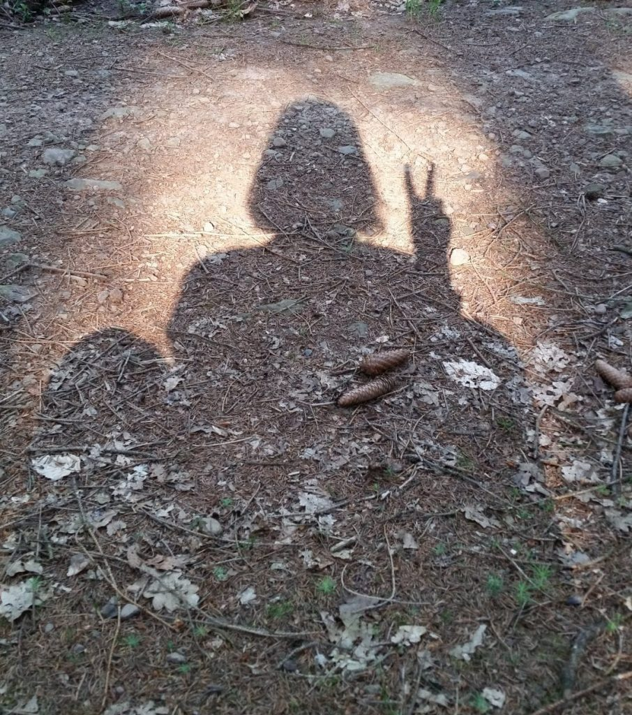 Shadow of seated figure with peace fingers